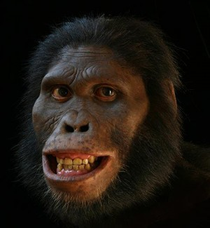 Creationists: I respect you, but I believe this is my dad.